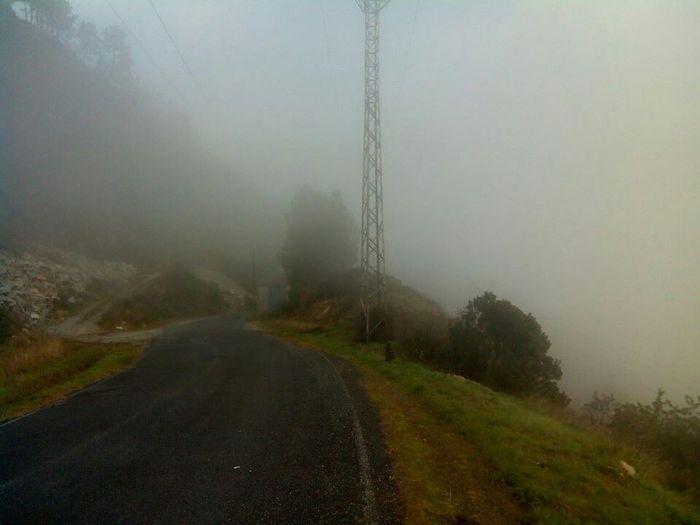 Fog Foggy Morning Fogspain