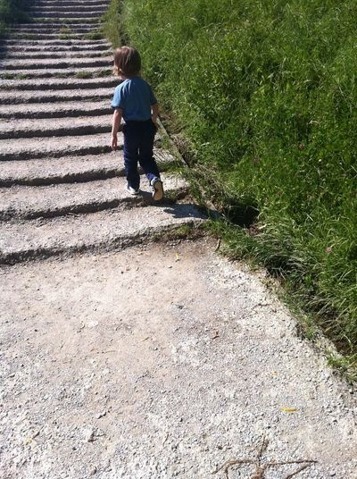 Rear view of boy walking on staircase