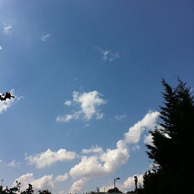 Turkcell Maltepe Istanbul Türkiye turkey bulut cloud sky skyporn manzara nature gokyuzu white blue