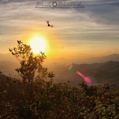Visitkalsel Iamacreativ Thecreativmovement Landscape Mount Mountain Sky Sunrise Bee Adventure Travel ______________________