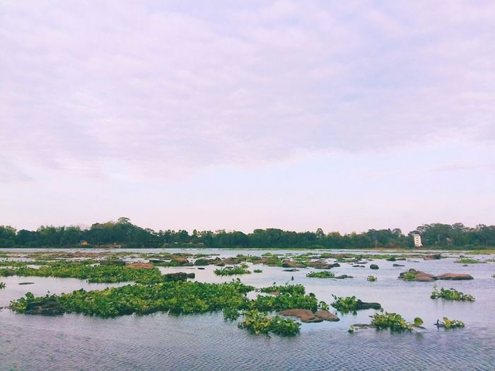 ...Kang Sa-Pue ...River View River Riverscape Rock Current Sky Rocks And Water Water Tree Water Trees Leaves Ubonratchathani