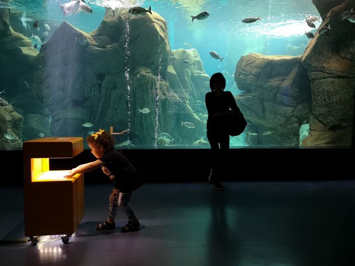 yellow children EyeEm Best Shots Life colour of life Colour Eyem Sea Life Water Aquarium Underwater Child