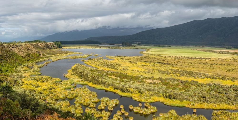 Panoramic: A view across the Rakatu Wetlands in Whale Creek, New Zealand Marsh Panoramic Travel Wetland Beauty In Nature Cloud - Sky Day Environment Growth Lake Landscape Mountain Nature New Zealand No People Non-urban Scene Outdoors Plant Scenics - Nature Sky Tranquil Scene Tranquility Water Yellow The Traveler - 2018 EyeEm Awards