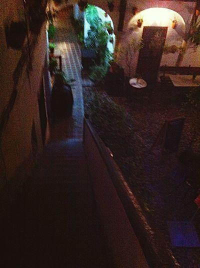 Noches De Primavera Temprana