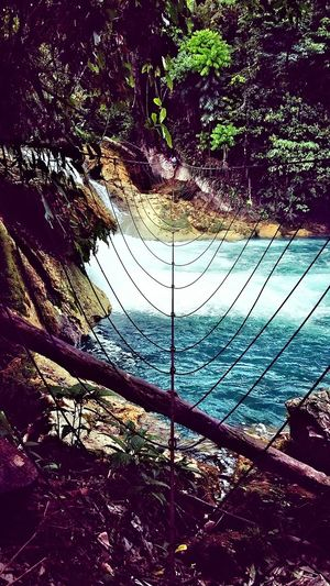 Share Your Adventure Monkey Bridge Over Falls Aliwagwag Falls Eco Park DvOriental Philippines