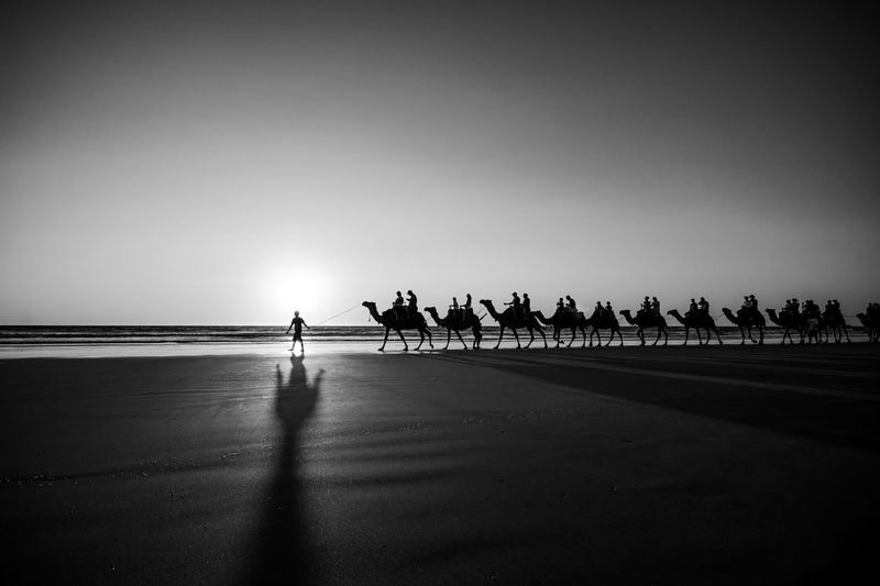 Water Sky Nature Crowd Group Of People Sea Copy Space Large Group Of People Silhouette Outdoors Camel Train Cable Beach Australia Australian Landscape Blackandwhite Black And White Photography Shadows & Lights Shadows Reflection Reflections In The Water Looking At View Broome