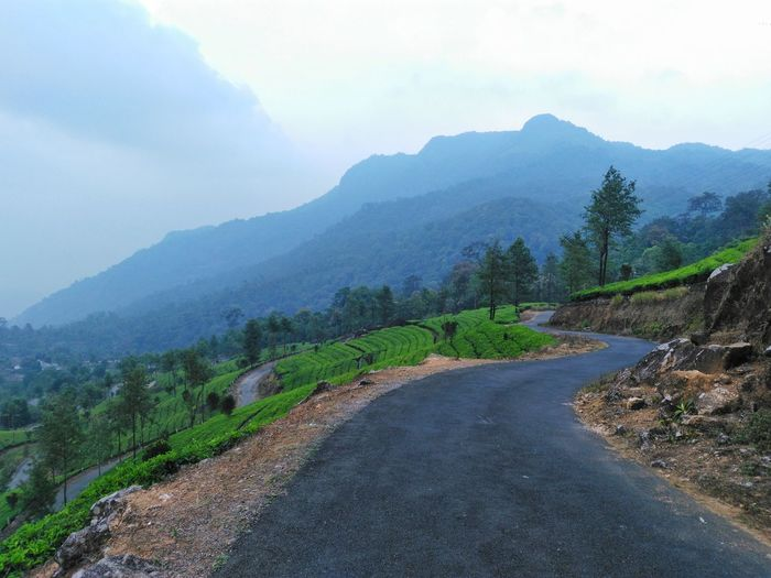 A road through the tea estate Mountain Mountain Range Shadow Landscape Road Scenics Nature Outdoors Winding Road Beauty In Nature Cloud - Sky Tree Sky Lush - Description No People Day Nature Beauty In Nature Travel Leisure Activity Travel Destinations Kerala Tranquility Hiking India