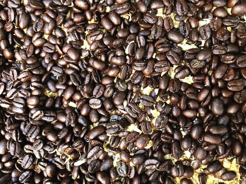 Cofee Food And Drink Abundance Brown Coffee - Drink Coffee Crop Large Group Of Objects Food Seeds Freshness No People Backgrounds Coffee Bean Outdoors Close-up Day
