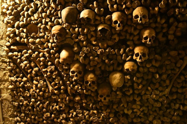 Bones Darkness France Freihand Gruselig Paris Paris, France  Sightseeing Travel Traveling Abundance Backgrounds Bone  Catacombes Catacombes De Paris Catacombs Close-up Day Dunkel Food Food And Drink Full Frame Human Skull Indoors  Katakomben Knochen Large Group Of Objects People Scary Scary Places Skull Skulls Skulls And Bones Spot Travel Destinations