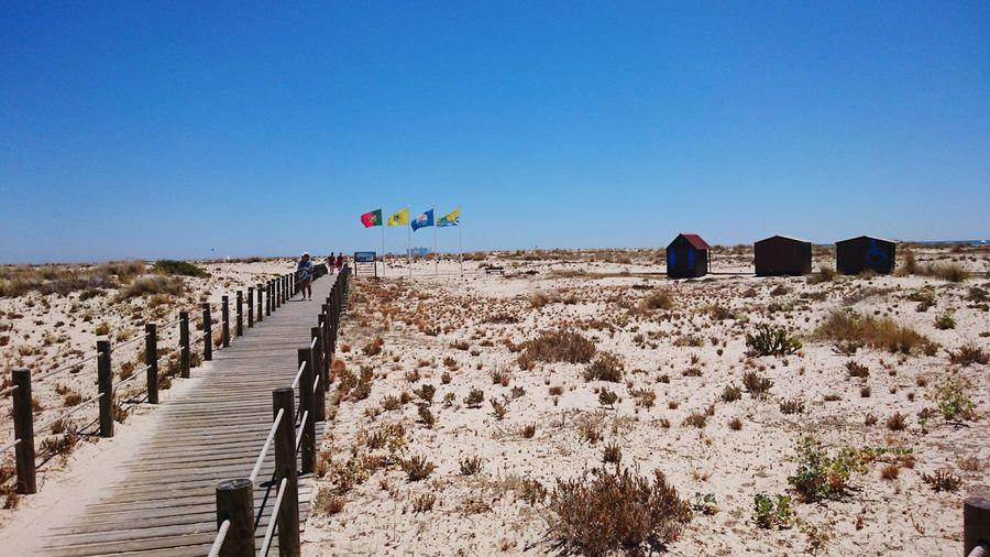 Long Narrow Jetty On Sandy Beach