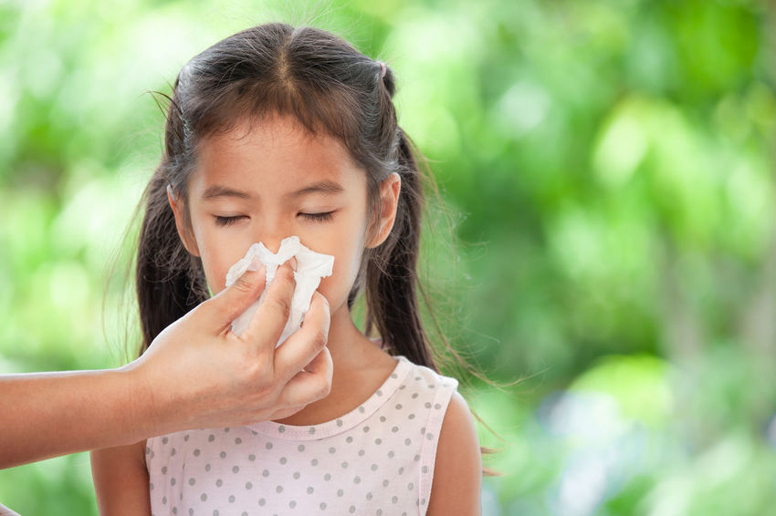 Sick asian little child girl wiping and cleaning nose with tissue on her hand Asian  Breathing Cleaning Tissue Allergy Antibiotic Child Cough Fever Flu Girl Healthcare And Medicine Illness Kid Medical Napkin Nose Patient Running Nose Sick Sinus Sneezing Snot Virus Wipe