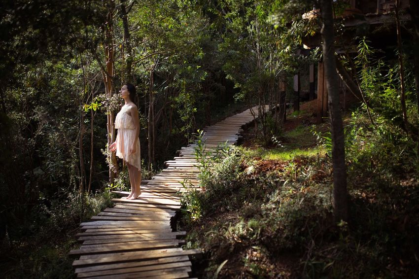 http://endemico-spa.com/ Art ArtWork Beauty In Nature Canon Canonphotography Full Length Nature One Person One Woman Only Outdoors Photo Photoart Photography Rear View Sigma Stairs The Way Forward Tree Walking