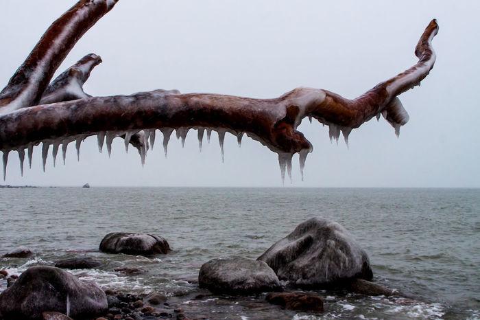 Winter auf Rügen. Baltic Sea Eis Frost Ice Insel Insel Rügen Kalt Mecklenburg-Vorpommern Nature Nature_collection Naturschutzgebiet Ostsee Ostseeküste Rügen Winter Winter_collection Winterwonderland