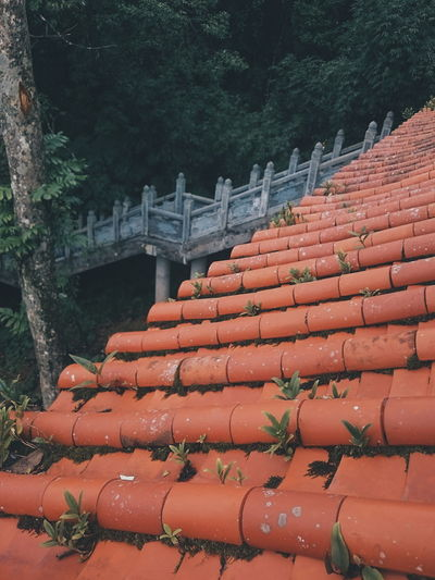 Outdoors No People Roof Red Tree Day Nature Sky EyeEm Best Shots Sunlight Art Is Everywhere Pagoda Temple Vietnam Asian  Asian Culture Asian Art Adventures Beyond The Ultraworld EyeEmNewHere EyeEm Nature Lover Color Of Life! EyeEm Summer Views Lifestyles Beauty In Nature