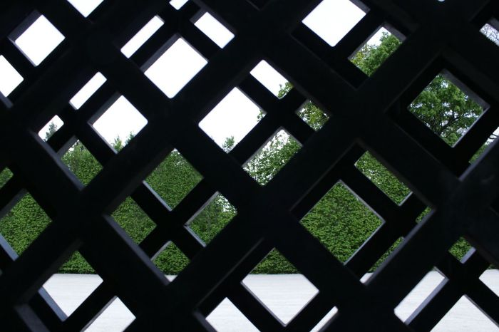 Fence Grid Dobble Black Grid Bush Growing The Other Side Your Design Story