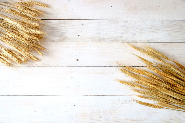 Wheat ears on white wooden background Copy Space Agriculture Cereal Plant Close-up Crop  Food Food And Drink Indoors  Nature No People Plant Wheat White Background White Wooden Background Wood - Material Wooden Texture