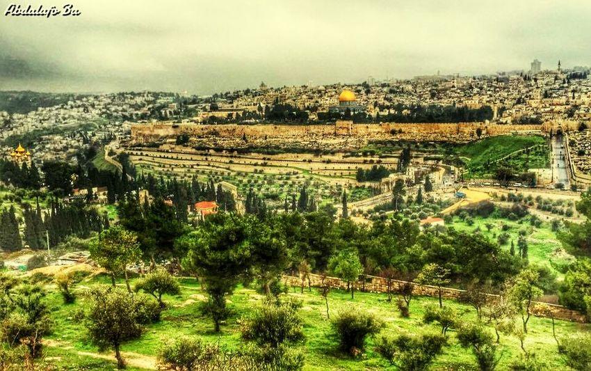 Jarusalem Holyland Palestine Home