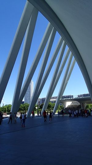 Large Group Of People Architecture Built Structure Lifestyles Day Women Men Indoors  City Real People Modern Sky People Adults Only Adult Santiago Calatrava Calatrava València Valencia, Spain Walencja Hiszpania