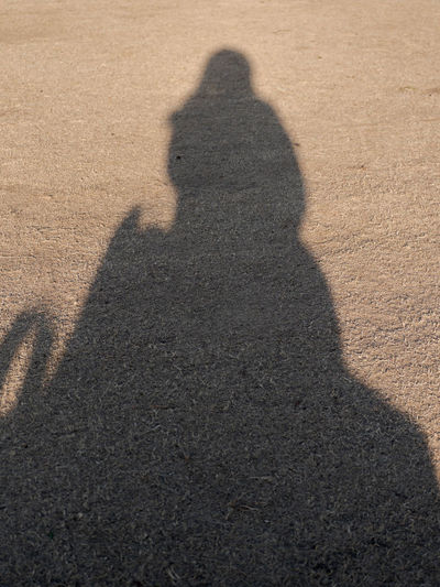 Shadow of people sitting on sand