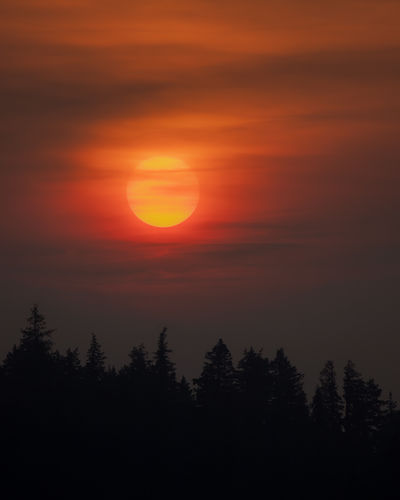 Smokey sunrise yesterday morning over Ness Lake. There are currently 500 wildfires burning across BC with 440 thousand acres burned so far this summer. While we are not personally close to any of the bad fires, we have been experiencing high smoke levels and a lot of ash fallout over the past couple of days. Here is hoping for some rain. Love Life, Love Photography Wildfire Smoke Beauty In Nature Cloud - Sky Idyllic Majestic Nature No People Non-urban Scene Northern British Columbia Orange Color Outdoors Plant Romantic Sky Scenics - Nature Silhouette Sky Smokey Smokey Sky Sun Sunlight Sunset Sunsets Tranquil Scene Tree Wildfires