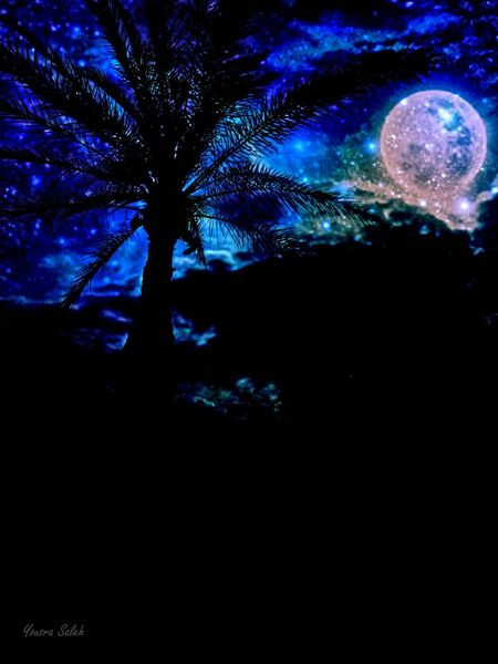 Imagination Creativity Creative Light And Shadow Creative Edit Edited Nightsky Nightview Night Shot Night Out Night Sky Palm Palm Tree Blue Night Dark Futuristic Star - Space Nature Illuminated Sky Close-up Space Outdoors Low Angle View Still Taking Pics ❤