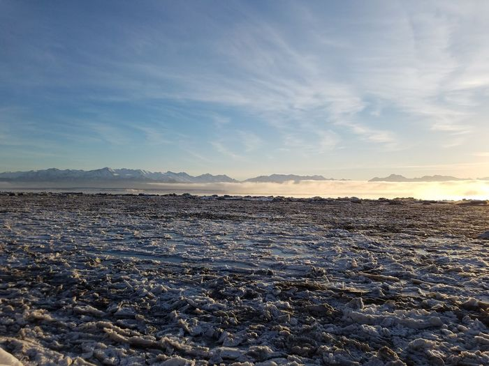 Knik Arm of the Cook Inlet, Alaska Nature Outdoors No People Sky Beauty In Nature Water Day Pack Ice Sea Ice Knik River Wilderness Area Cold Temperature Backcountry Wilderness Sunlight Winter Beauty In Nature Tranquility Tranquil Scene