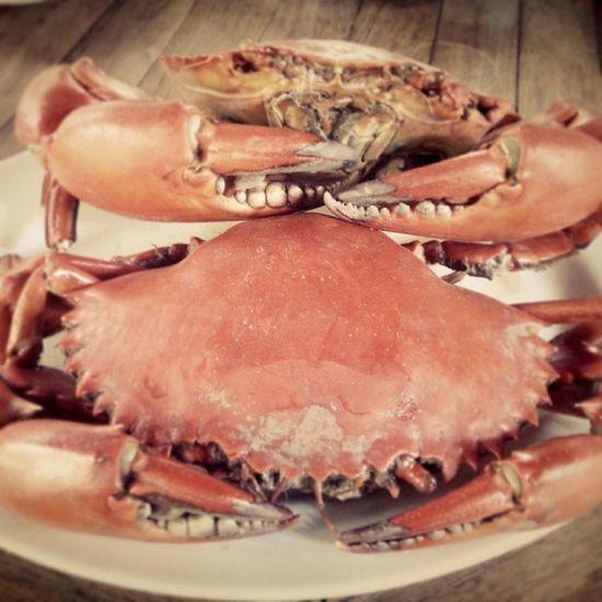 Crab Crab Bd Kepiting Bandar bandardjakarta bandarjakarta insta instag indonesianfood instagram rest restaurant jaktown jakcity jakarta indonesia ind seafood alamsutra ancol food