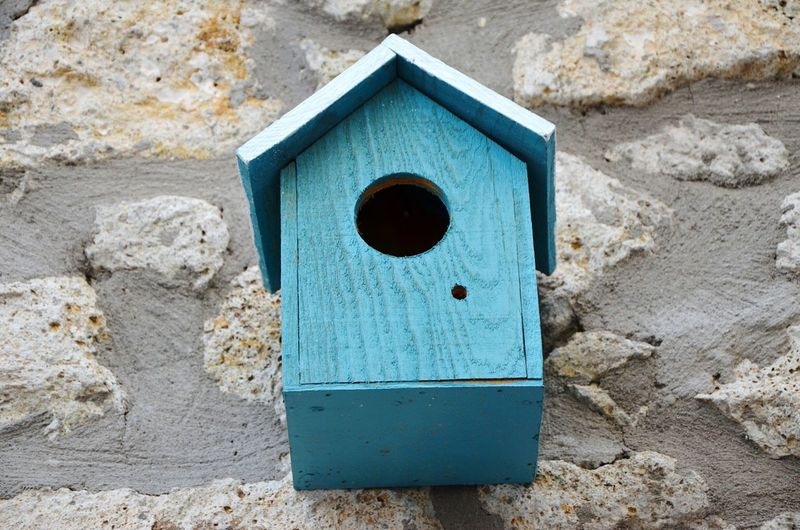 Birdhouse Close-up Outdoors Nature House Birds Home Wall Hanging Built Structure Blue Wood Wood - Material Handmade