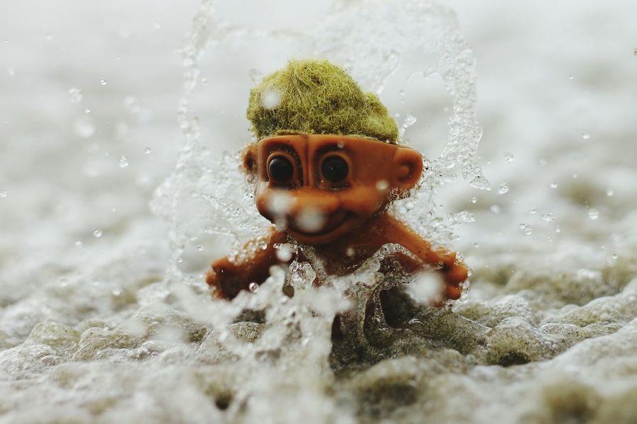 mr. trolly taking a splash at the beach... First Eyeem Photo