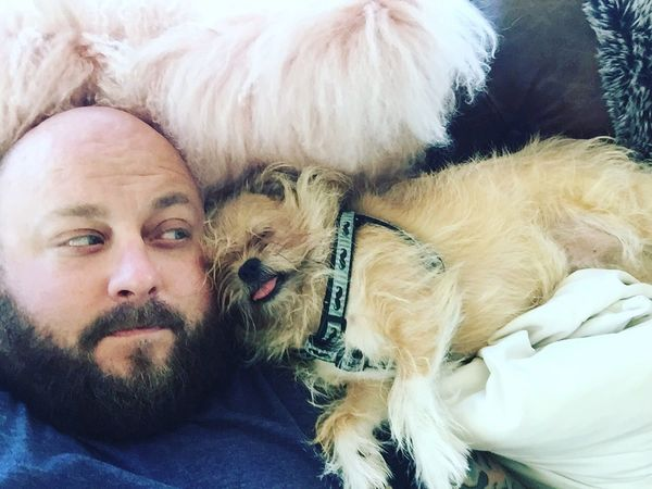 Brussels Griffon Snugglebuddy Sleep Snore Lovemydog Snuggle Pillow Side By Side Shot From Above  Indoors  Bearded Nap Love Dog Derp Brusselsgriffon Everydayimbrusseling Beardedman Beard Bald Manandhisdog This Is Masculinity
