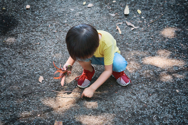 High angle view of boy with leaves crouching on road
