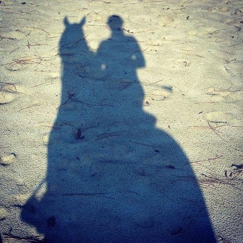 Morning rides are the best Summer Horses Pony Farm Life Southern Pines North Carolina Morning Hunter Pony