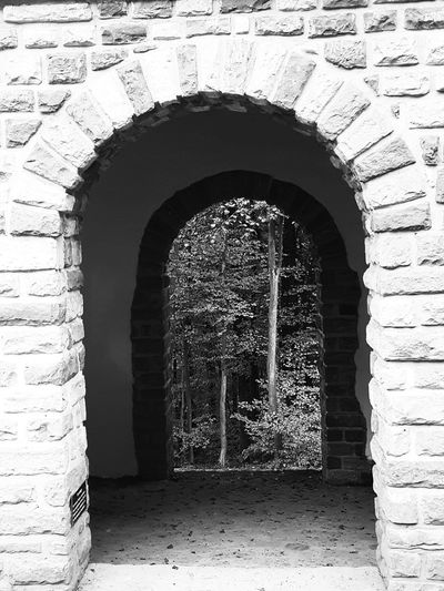 Arch Built Structure Architecture Building Exterior No People Day Archway Indoors  Smartphone Photography Playing With Filters Architecture Outdoors Beauty In Nature Monochrome Photograhy Monochrome _ Collection Landscape Monocrhome
