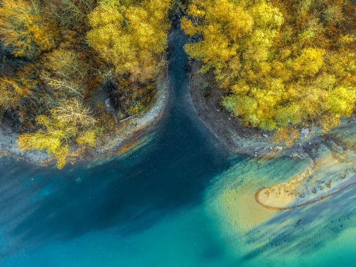 Lake. Water