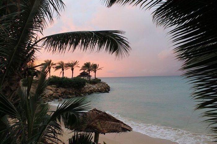 Paradise Beach Beach #sun #nature #water #TagsForLikes.com #TagsForLikesApp #TFLers #ocean #lake #instagood #photooftheday #beautiful #sky #clouds #cloudporn #fun #pretty #sand #reflection #amazing #beauty #beautiful #shore #waterfoam #seashore #waves #wave First Eyeem Photo