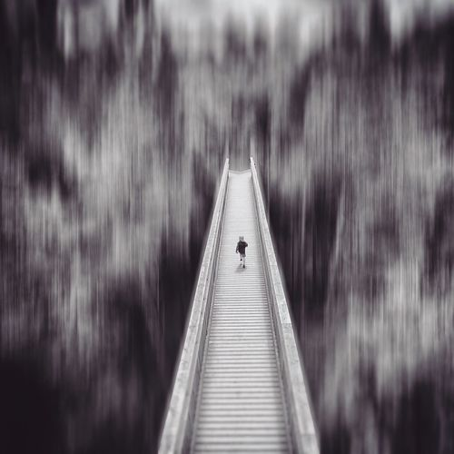 Dizzying | good morning my friends and a happy week to you all ✌️ The Way Forward Day Outdoors Water Nature Close-up The Great Outdoors - 2017 EyeEm Awards Blurred Motion Dizziness Place Of Heart Enjoying The View Path Bridge Darkart Sombre Mextures Pathways Walking Around Bw_collection Monochrome Motion Forest Built Structure Lost In The Landscape Black And White Friday Go Higher Visual Creativity
