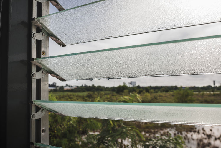 Morning Glass Glass - Material Green Color Growth Metal Pane Of Glass Window กระจก หน้าต่าง