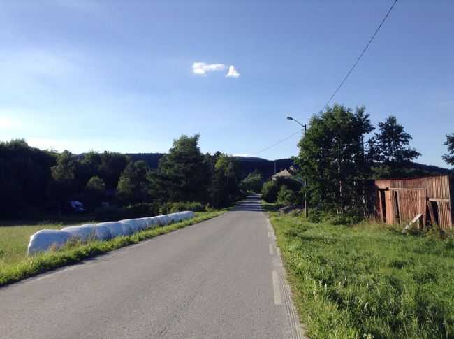 No sidewalk. On The Road Nature Trees Green Blue Sky Nice Weather Norway Pavement Sidewalk