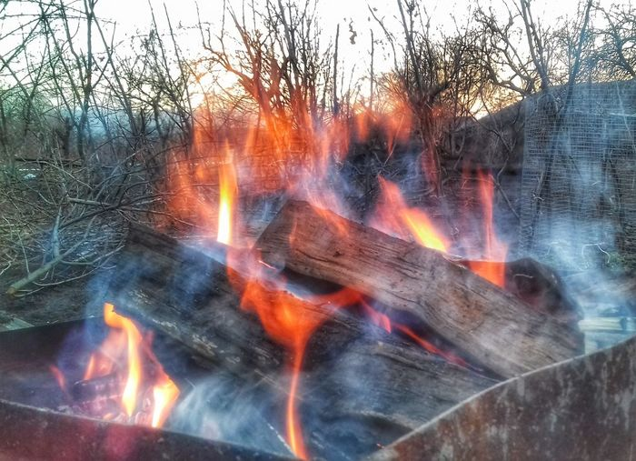 Fire - Natural Phenomenon Smoke - Physical Structure Outdoors Heat - Temperature Burning Flame Erupting Tree Day No People Power In Nature Forest Fire Close-up Lava