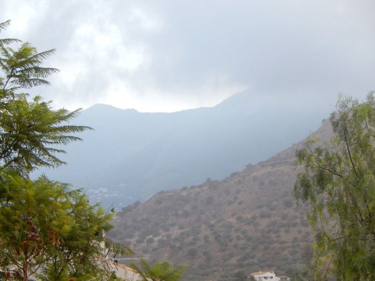 The misty mountains faded greens blended at sunrise Capture The Moment Photos Around You Nikon Coolpix S6300 In The Picture Andalucía