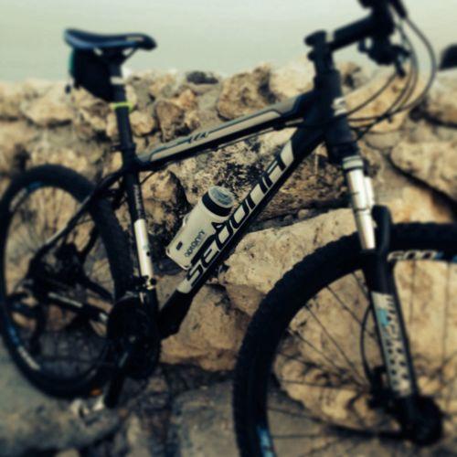 Bicycle Sedona Bisiklet Doğa