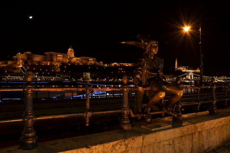 Budapest Castle Capital Cities  Cityscape Cityscapes Danube Danube River Famous Place Fence Night Statue Urban
