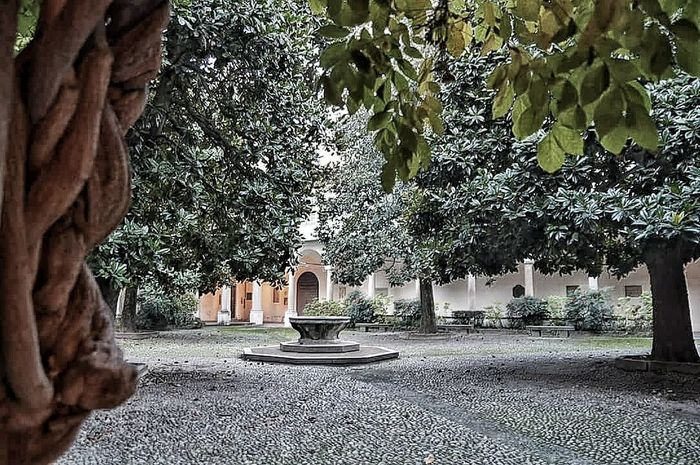 EyeEm Best Shots Nature_collection Taking Photos Architecture Streetphotography Walking Around The City  Università  University Pavia Italy