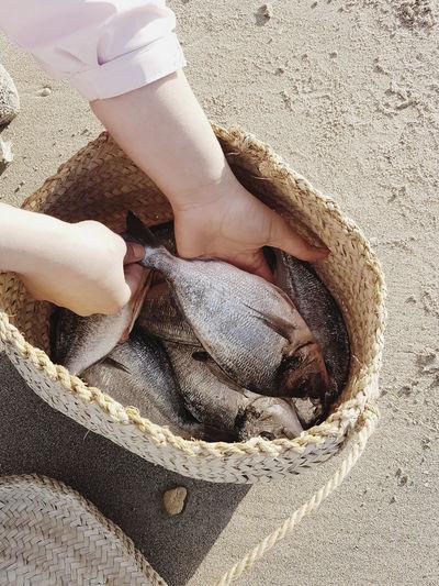 50 Ways Of Seeing: Gratitude Low Section Beach Sand Human Leg Summer Sunlight Women barefoot Human Foot High Angle View