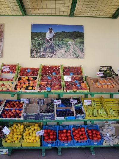 Sami Cefalonia Femalephotographerofthemonth 43GoldenMoments Popular Photos Taking Photos Market Variation Choice Fruit Retail  For Sale Large Group Of Objects Food And Drink Market Day Indoors  Real People Food Freshness Multi Colored Healthy Eating One Person Men People