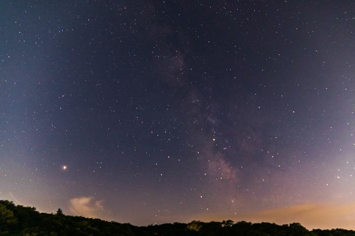 Milky Way and Mars. Japan Nagano Karuizawa,Japan Starry Sky Astronomy Galaxy Space Milky Way Tree Star - Space Constellation Star Trail Mountain Starry Star