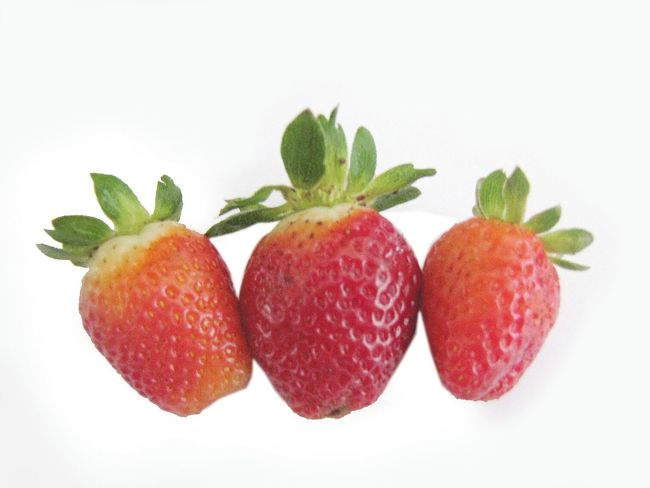 fresas Fondo Blanco Fragility Fresas Fresas 🍓 Png Sin Fondo White Background Strawberry Fruit Food Red Food And Drink Berry Fruit Sweet Food