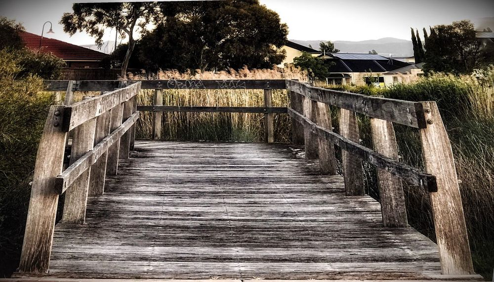 Bridge Built Structure Outdoors No People Tree Clear Sky Nature Beauty In Nature Bridge - Man Made Structure EyeEm Nature Lover Eye4photography  EyeEm Gallery Wooden Bridge My City My Love