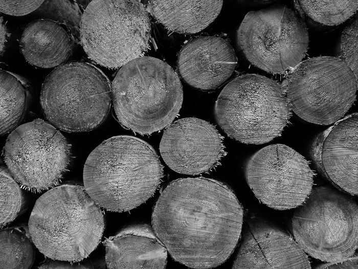 Large Group Of Objects Backgrounds Stack Textured  Outdoors Wood Monochrome