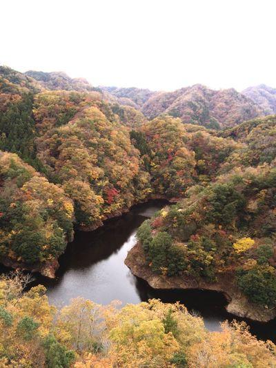 茨城県 竜神峡 紅葉